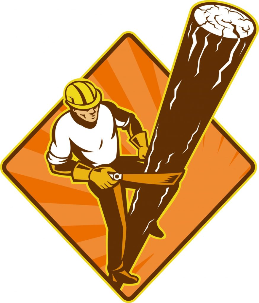Tree Removal Barrie - Home